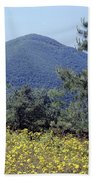 143419-turk Mountain Overlook  Beach Towel