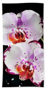 Twin Orchids Beach Towel