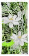 Two Water-lilies Beach Towel