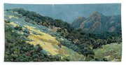 Valley Splendor Beach Towel