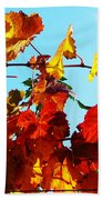 Vineyard 12 Beach Towel