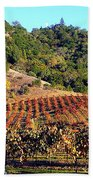Vineyard 3 Beach Towel