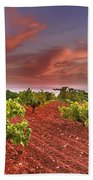 Vineyards At Sunset Beach Towel