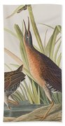 Virginia Rail Beach Towel