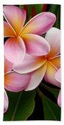 Wailua Sweet Love Beach Towel by Sharon Mau