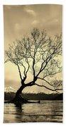 Wanaka Tree - New Zealand Beach Towel