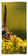 Wasp On Wildflower Beach Towel