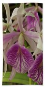 White And Purple Orchids Beach Towel