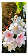 White Apple Blossom In Spring Beach Towel