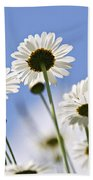 White Daisies Beach Towel by Elena Elisseeva
