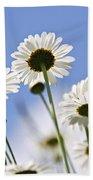 White Daisies Beach Sheet