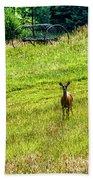 Whitetail Deer And Hay Rake Beach Towel