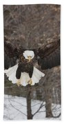 Wings Of Wonder Beach Towel