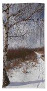 Winter Birch Beach Towel