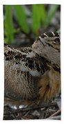 Woodcock In The Woods Beach Towel