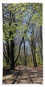 Woodland Walk England Beach Towel