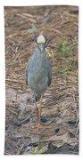 Yellow Crowned Night Heron At Tidal Creek Beach Towel