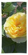 Yellow Rose  Beach Towel