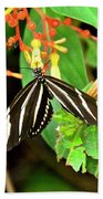 Zebra Longwing On Firebush  Beach Towel