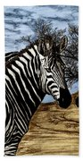 Zebra Outback  Beach Towel