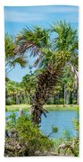 Palmetto Forest On Hunting Island Beach Beach Towel