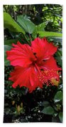 The El Yunque National Forest, Puerto Rico Beach Towel