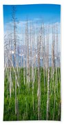 Vast Scenic Montana State Landscapes And Nature Beach Towel