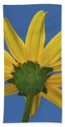 Wild Sunflower Stony Brook New York  Beach Towel
