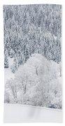 Winter Landscapes Beach Towel