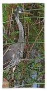 100- Great Blue Heron Beach Towel