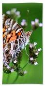 1074- Butterfly Beach Towel