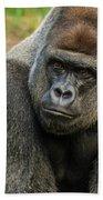 10898 Gorilla Beach Towel