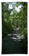 1174, Forest Path Beach Towel