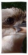 Australia - Kookaburra Poses Beach Towel