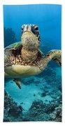 Green Sea Turtle Beach Towel