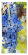 Red Grapes On The Vine Beach Towel