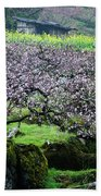 Blossoming Peach Flowers In Spring Beach Towel
