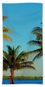 13- Palms In Paradise Beach Towel