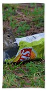 14- Chip Lovin' Squirrel Beach Towel