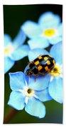 14 Spot Ladybird Beach Towel
