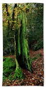 Fontainebleau Forest Beach Towel