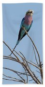 Lilac Breasted Roller 2 Beach Towel