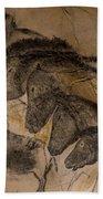 150501p087 Beach Towel
