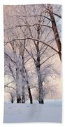 Amazing Landscape With Frozen Snow Covered Trees At Sunrise   Beach Towel