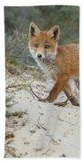 Red Fox Cub Beach Towel