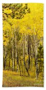 Rocky Mountain Autumn Beach Towel