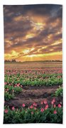 180 Degree View Of Sunrise Over Tulip Field Beach Towel