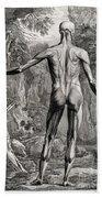 18th Century Anatomical Engraving Beach Towel