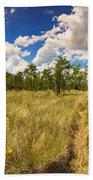 Florida Everglades Beach Towel