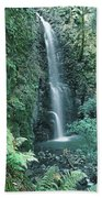 1b6351 Diamond A Waterfall Beach Towel